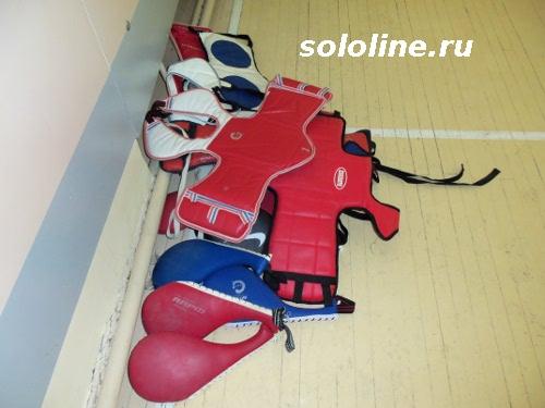 лапа-ракетка и защитный жилет тхэквондо