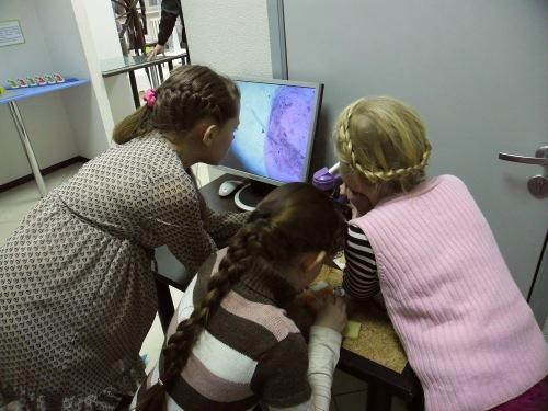 экспериментус электронный микроскоп