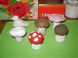грибы 3