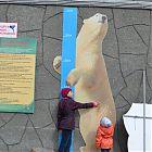 ростомер-медведь