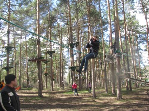 лесной экстрим парк гагарина
