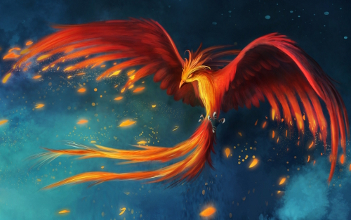 птица заката