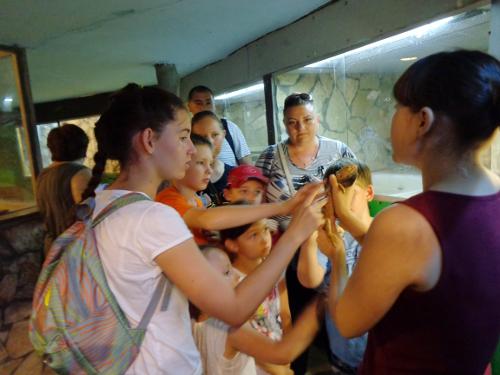 экскурсия на крокодиловую ферму