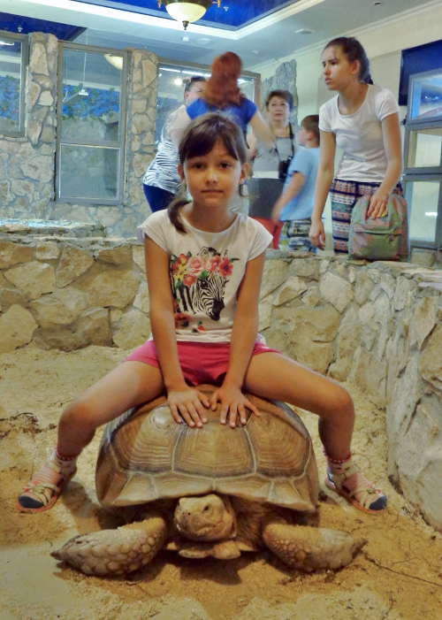 ребенок на шпороносной черепахе