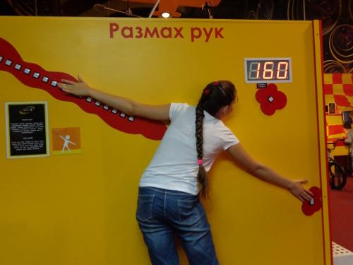 размах рук измерить
