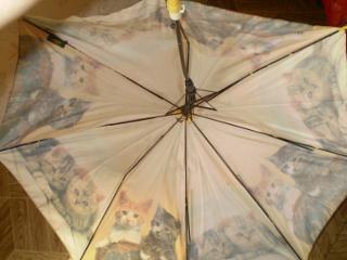 сломанный зонтик