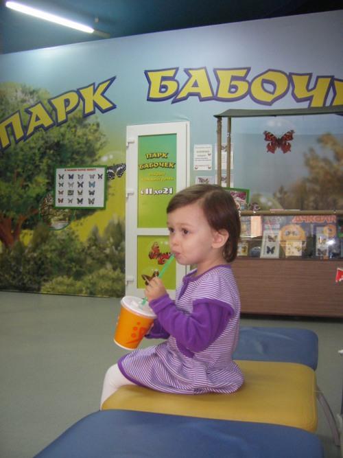 куба парк бабочек