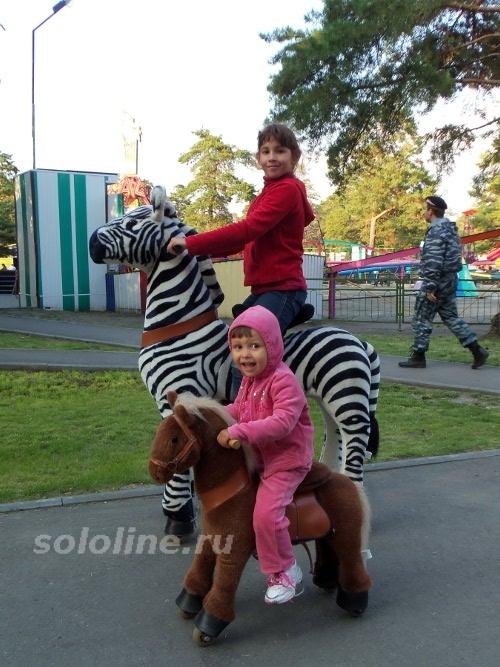 поницикл и зебра-цикл